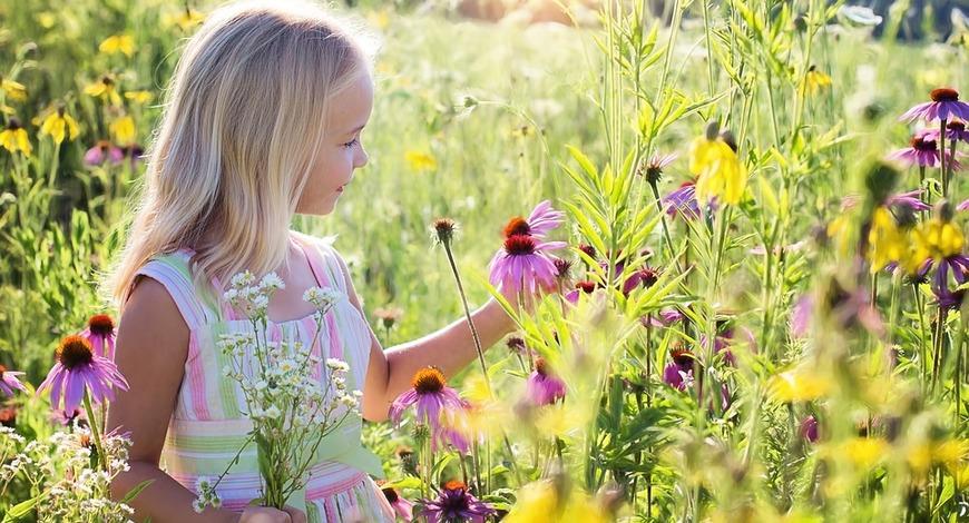 В Природе не существует вечного двигателя. Железо изнашивается, что уже за человека говорить ... Но у Природы есть лекарственные растения. И стоит воспользоваться целебными свойствами растений!