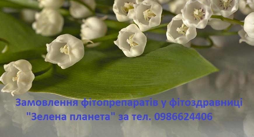 """Конвалія, кукуричка, ландиш, маївка...  У перекладі з латини назва квітки означає """"лілія долин""""."""